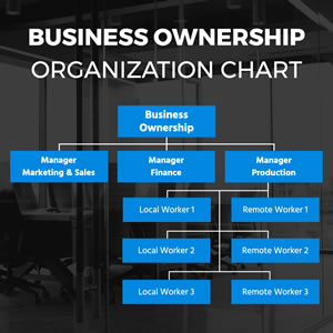 Business Ownership Organization Chart Design