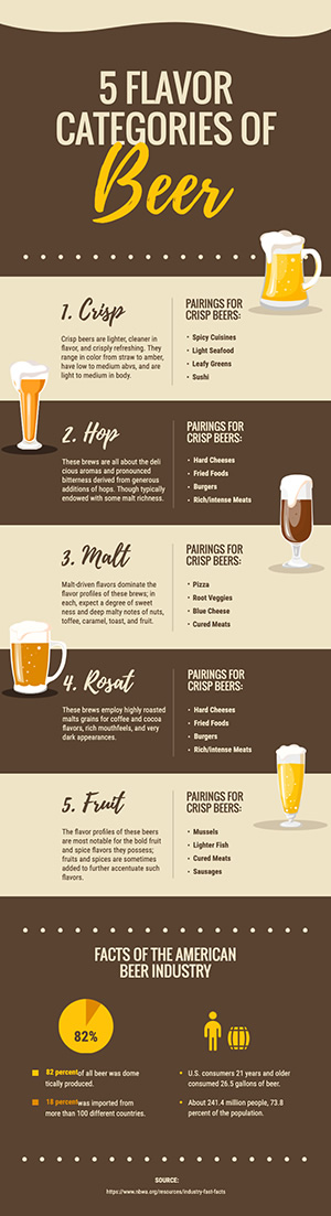 Beer Category Infographic Design