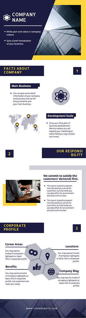 Corporate Introduction Infographic Design