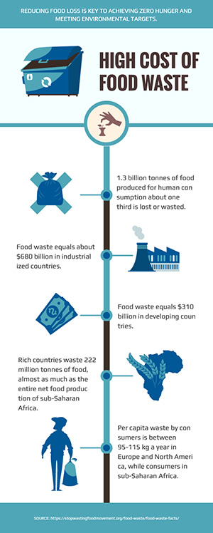 Food Waste Infographic Design