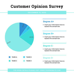 Customer Survey Pie Chart Chart Design