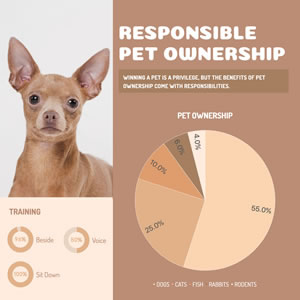 Pet Ownership Pie Chart Chart Design