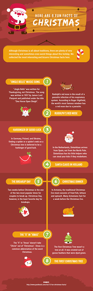 Fun Facts About Christmas Infographic Design