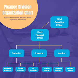 Finance Division Organization Chart Design