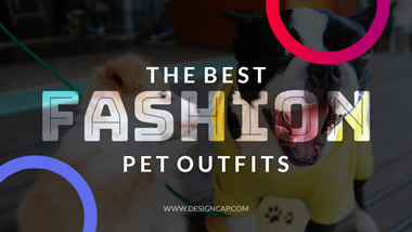 Pet Outfits YouTube Thumbnail Design