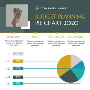 Company Budget Planning Pie Chart Design
