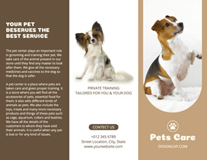 Puppy Care and Supply Brochure Design