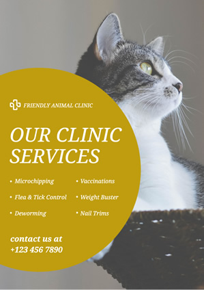 Cat Photo Animal Clinic Poster Design