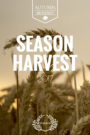 Season Harvest Pinterest Graphic Design