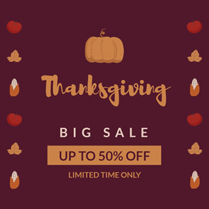 Limited Time Thanksgiving Sales Instagram Post Design