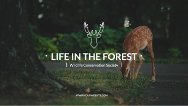 In the Forest YouTube Channel Art Design