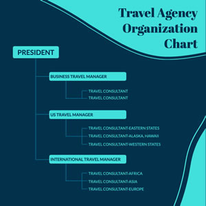 Travel Agency Organization Chart Chart Design