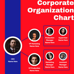 Corporate Organization Chart Design