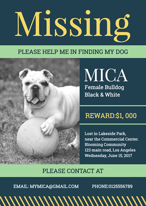 Finding Dog Poster Design