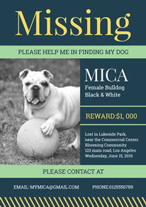 Blue Missing Dog Poster design