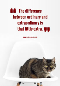 Cat Photo Motivational Quote Poster design